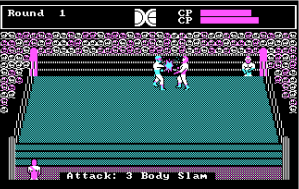tag-team-wrestling